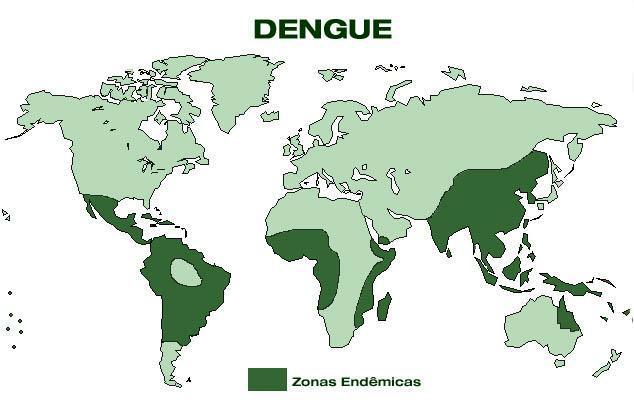 Entenda melhor o que é a dengue e quais são os tratamentos