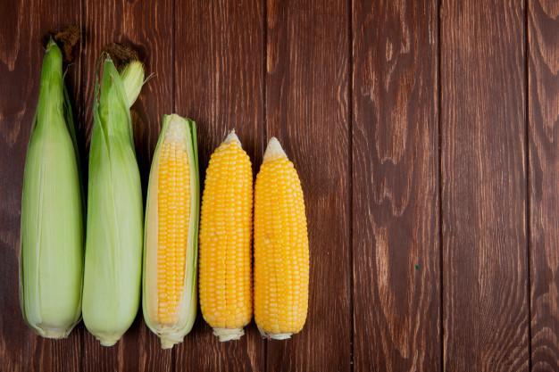 Saiba a diferença entre alergia e intolerância alimentar