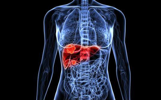 Insuficiência hepática – conheça os estágios da doença