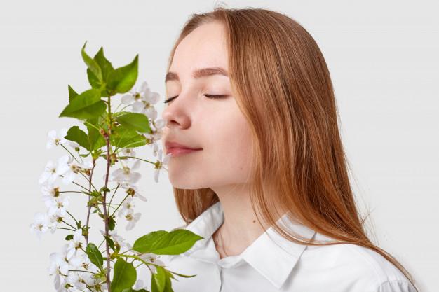 O olfato humano – memória olfativa