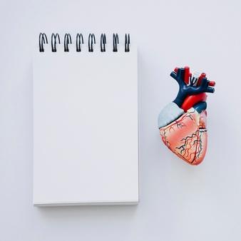 Arritmia cardíaca – o que é?